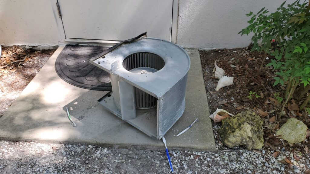 Blower Cleaning in Sarasota